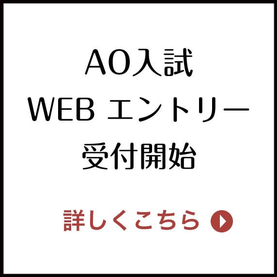 AO入学試験 エントリー